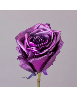 Purple Metalic Roses Flower Arrangement