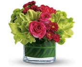 All-Occasion Florist in Columbia MD