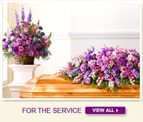 For The Service Image