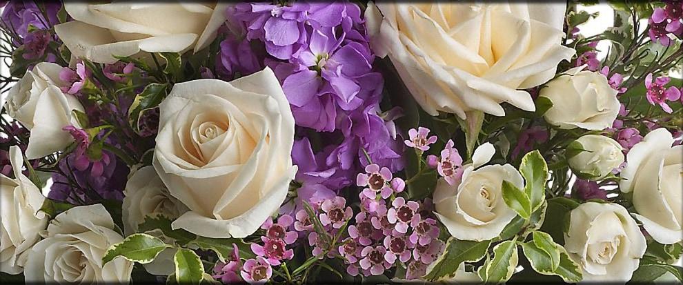 Washington DC Florist