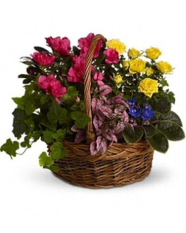 Blooming Garden Basket Flower Arrangement