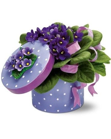 Violet flower vase Flower Arrangement