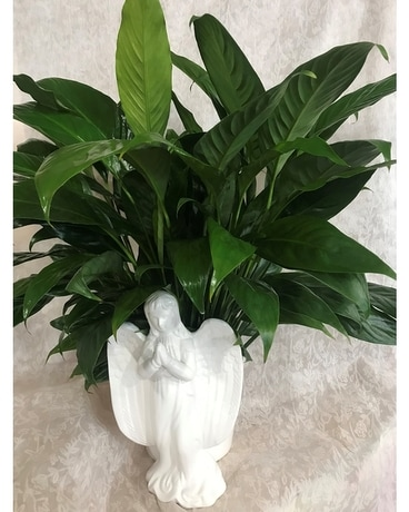 SERENITY SPATH  ANGEL CERMAIC CONTAINER Flower Arrangement