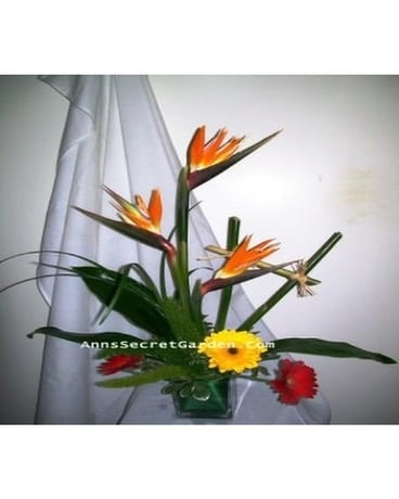 Tropical Lines Flower Arrangement