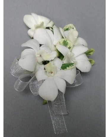 Corsages and boutonnieres delivery chicago il la salle flowers quick view white dendrobium orchid corsage mightylinksfo