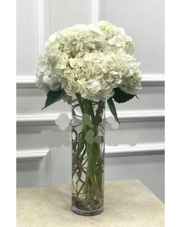 Tall Hydrangea Bouquet In Chicago Il La Salle Flowers