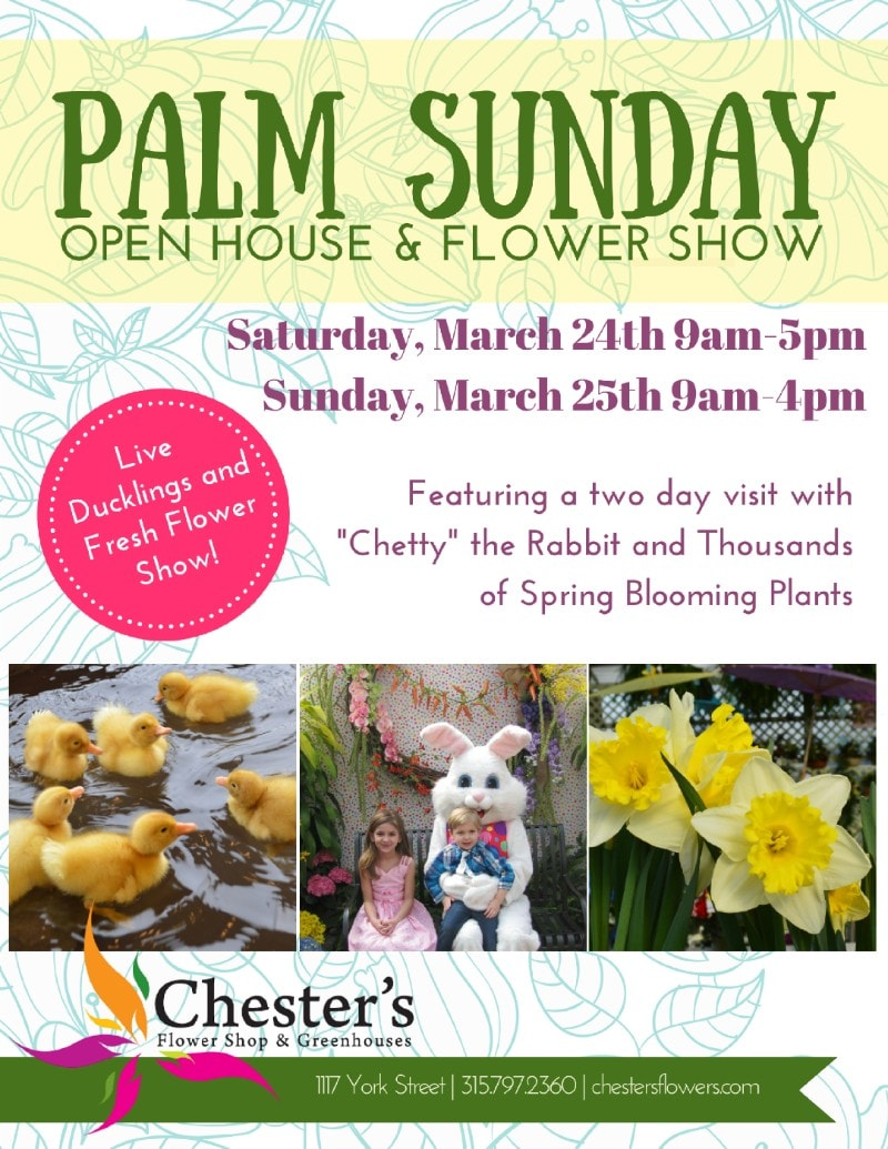 Palm sunday great cash and carry specials as always the ducklings will be on hand all week and through easter sunday to bring smiles to both the young and the mightylinksfo