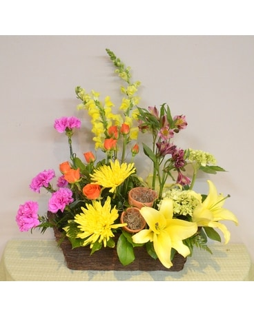 SUMMER SIZZLE Flower Arrangement