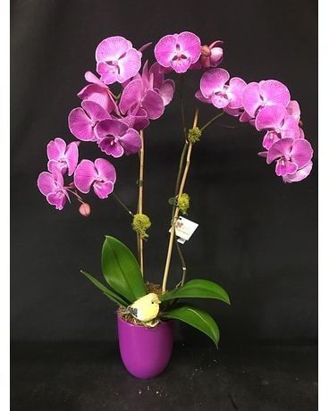 Royal Purple Princess Flower Arrangement