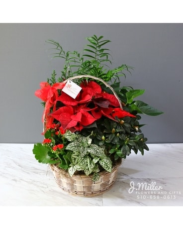 Holiday European Basket Flower Arrangement