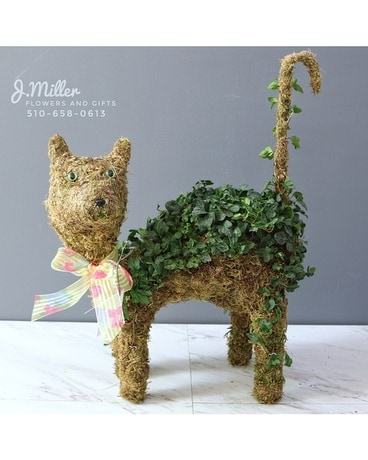 (Sold Out!) Meow (The Ivy Cat). Flower Arrangement