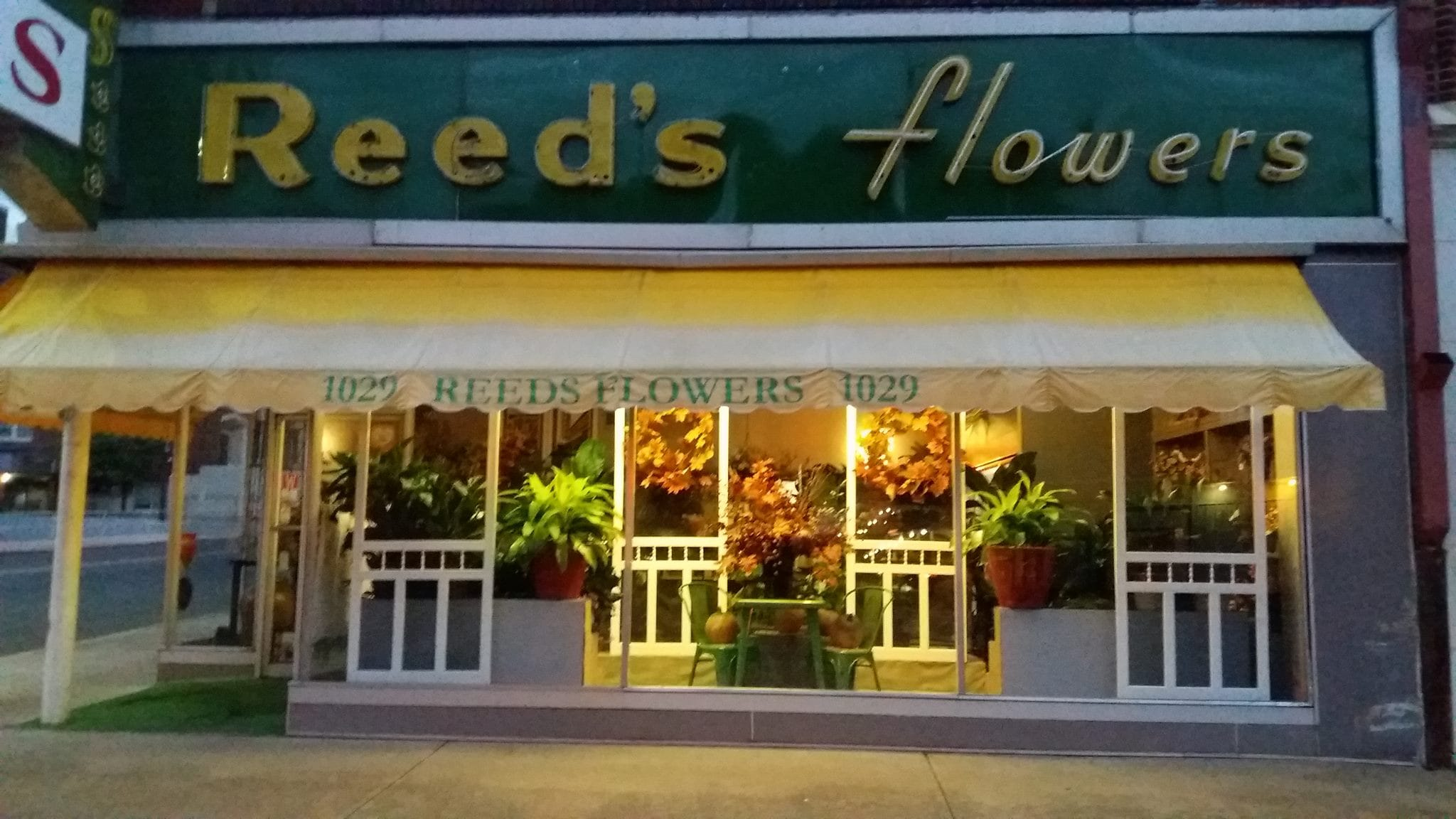 Shop By Flowers Delivery Waco Tx Reeds Flowers