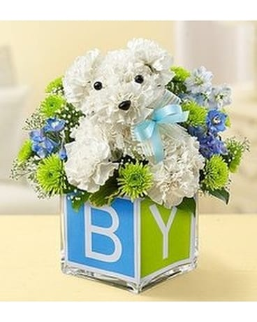 Baby Boy Pup Bouquet In St Petersburg Fl Artistic Flowers