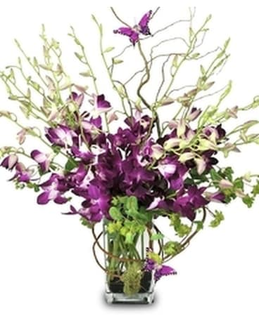 Purple Orchid Majesty Bouquet Flower Arrangement