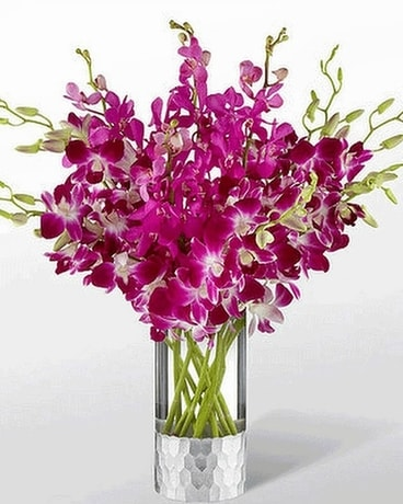 Vera Wang - Orchid Dream Bouquet Flower Arrangement