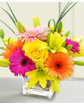 Cheer for You Flower Arrangement