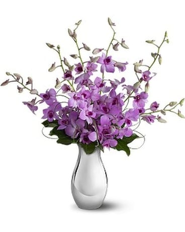 Teleflora's Orchid Reflections Flower Arrangement