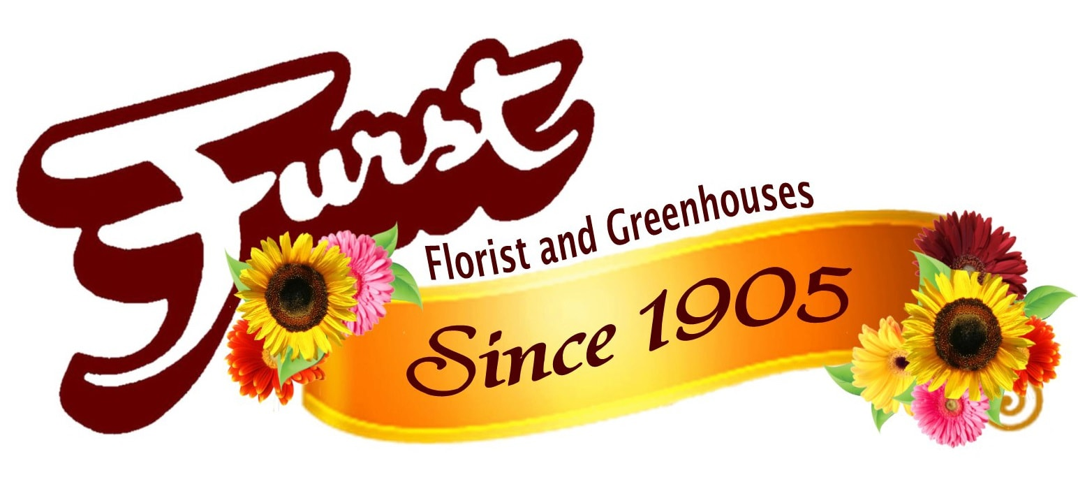 Birthday Flowers Delivery Dayton Oh Furst The Florist Greenhouses