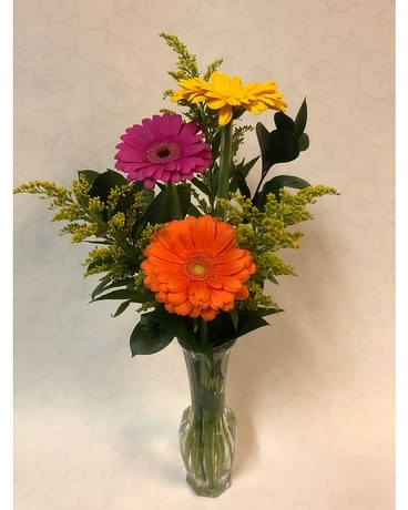 Gerbera Trio in Budvase Flower Arrangement