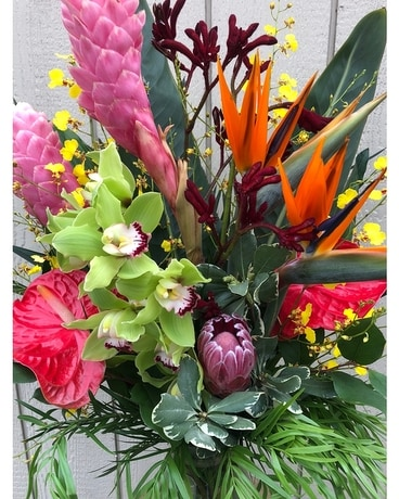Tropical Arrangement - Designer Choice Flower Arrangement
