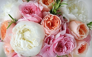 Image of Special Flowers