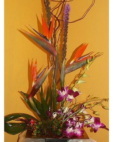Desktop Tropical Flower Arrangement