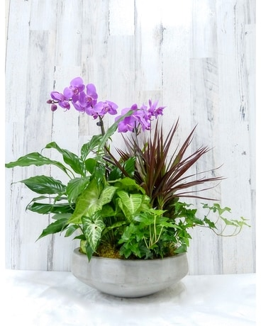 Urban Garden Flower Arrangement