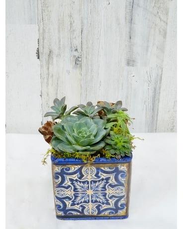 Mosaic Succulents Flower Arrangement