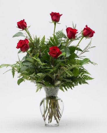 Busch's Classic Half-Dozen Rose Flower Arrangement