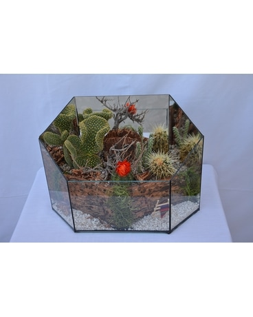 Large Succulent Terrarium Flower Arrangement