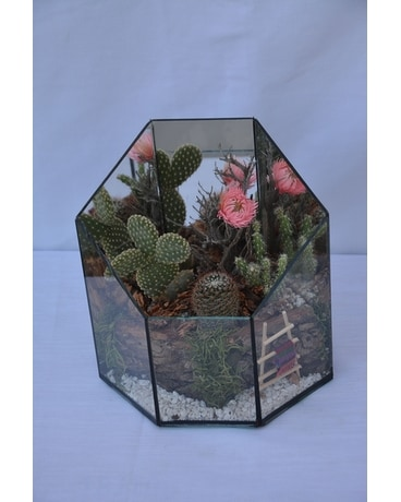 Medium Succulent Terrarium Flower Arrangement