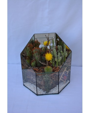 Small Succulent Terrarium Flower Arrangement