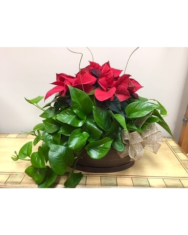 Christmas planter Flower Arrangement