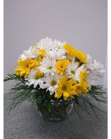 Daisy Bowl Flower Arrangement