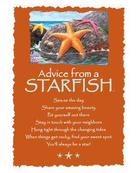 Starfish Greeting Card Gifts