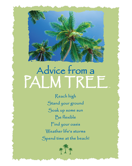 Palm Tree Greeting Card Gifts
