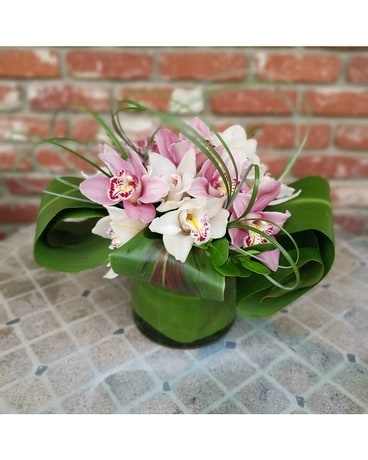 Simply Chic Orchids Flower Arrangement