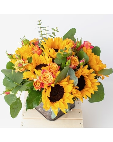 Bright and Happy Sunflowers