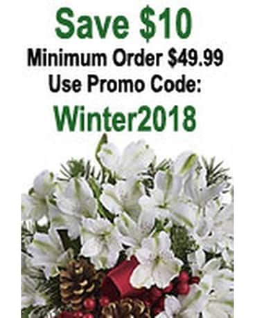 Winter Coupon - by Citti's Florists Flower Arrangement