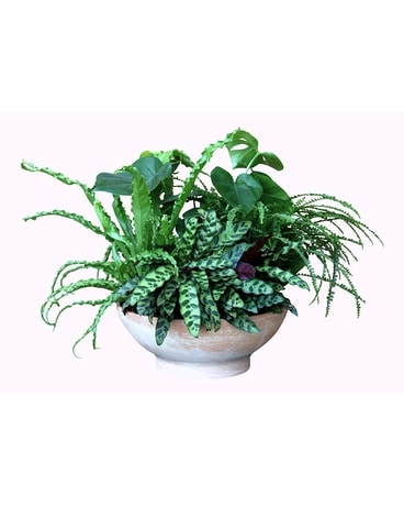 Fern Garden Flower Arrangement