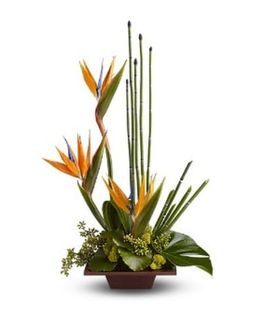 Teleflora's Bamboo Rainforest Flower Arrangement