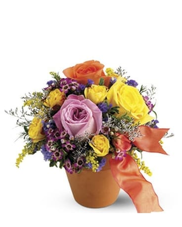 Teleflora's Sweet 'n Simple Flower Arrangement