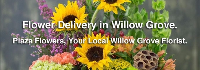 Flower Delivery in Willow Grove, PA