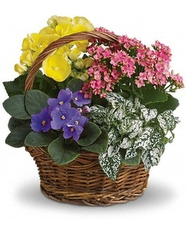 Spring Has Sprung Basket Flower Arrangement