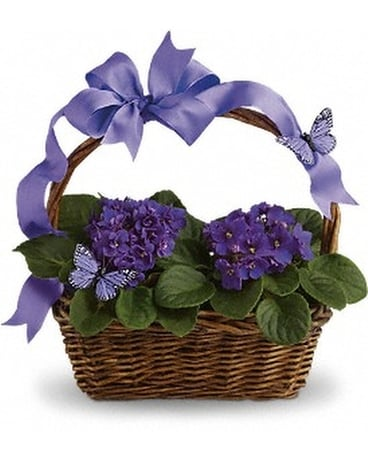 Violets and Butterflies Flower Arrangement