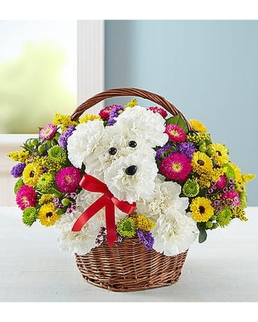 a-DOG-able Flower Arrangement