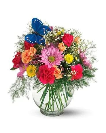 Hugs & Smiles Butterfly and Blossoms Flower Arrangement