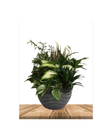 Large Gray Planter