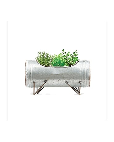Italian Herb Trio Grow Kit
