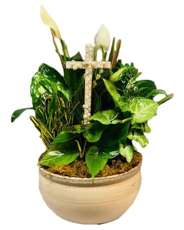 Exquisite Greens With Pearl Cross Dish Garden Plant